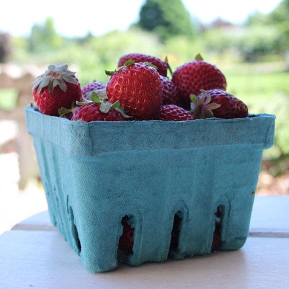 Gluten Free Strawberry Balsamic Tarts
